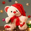 Adorable White Teddy with Red Cap