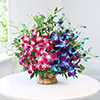 Arrangement of 10 Blue & Purple Orchids in a Basket