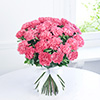 Bouquet of 25 Pink Carnations