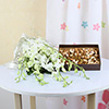 Bouquet of 6 White Orchids with 400gms Assorted Dryfruits