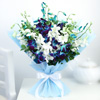 Bunch of 10 Blue & White Orchids