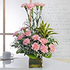 Bunch of 15 Pink Carnations in a Glass Vase