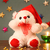 Cute Teddy with a Santa Cap