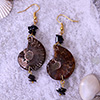Fashionable Brown Stone Earrings