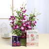 Glass Vase of 6 Orchids with Greeting Card & Dairy Milk Fruit & Nut