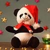 Lovable Panda Teddy Bear