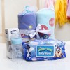 Set of 2 Baby Blankets with Wet Wipes & Feeding Bottle