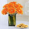 Vase Arrangement of 8 Orange Gerberas with 500 gms Cookies Box