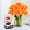 Vase of 8 Orange Gerberas with Black Forest Cake & Greeting Card